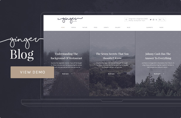 Ginger: Blog/Magazine WordPress Theme
