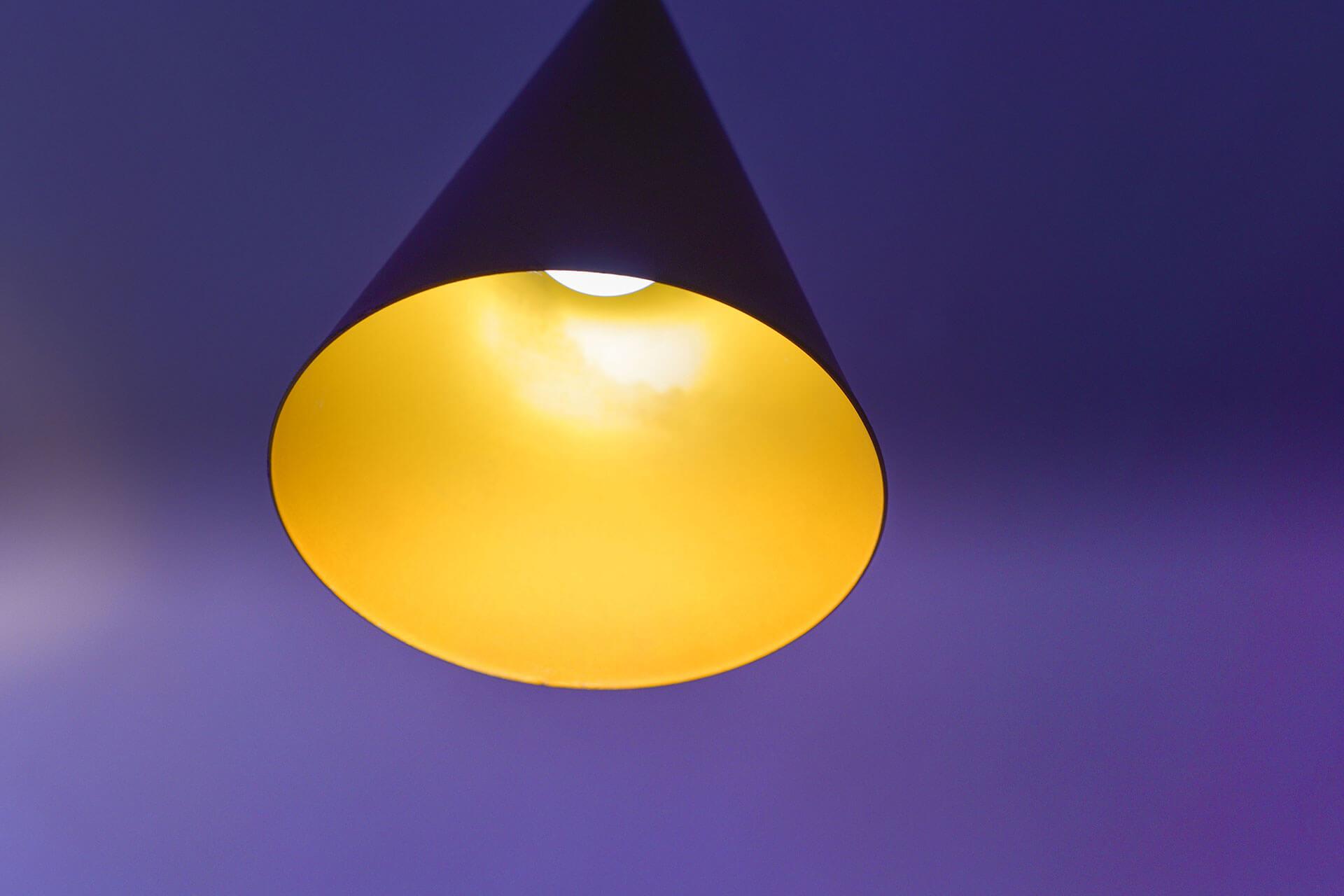 Lightbox Image 5